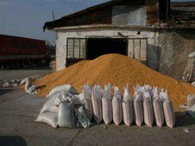 combaterea-daunatorilor-din-depozitele-de-cereale