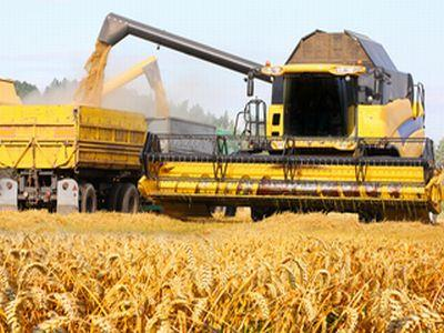 rute-speciale-pentru-transporturile-de-cereale-si-acces-pe-sosele-si-in-timpul-zilei
