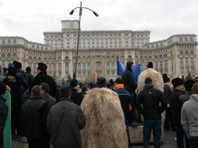 crescatorii-de-ovine-ameninta-ca-reiau-protestele-daca-legea-vanatorii-nu-se-modifica-pana-la-sfarsitul-lunii-vitoare