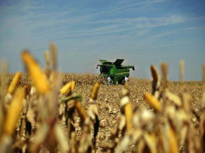 agricultura-devine-o-afacere-tot-mai-profitabila