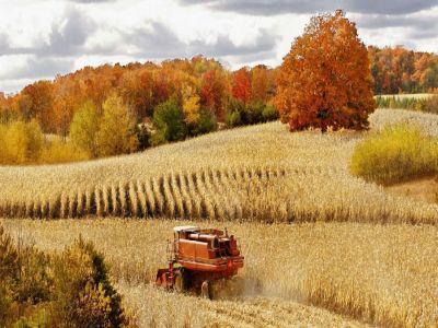 buletin-agrometeorologic-pentru-perioada-25-29-septembrie