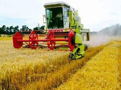 madr-isi-prezinta-viziunea-pentru-agricultura-si-dezvoltare-rurala-pe-termen-mediu-si-lung
