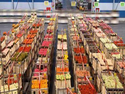 excedent-de-jumatate-de-miliard-de-euro-din-comertul-cu-produse-agricole