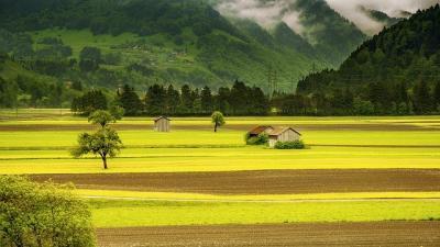 ue-iti-cere-parerea-pentru-viziunea-pe-termen-lung-pentru-zonele-rurale