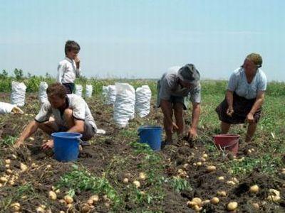 afir-a-reziliat-11000-de-contracte-de-finantare-pe-vechiul-pndr