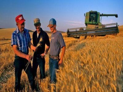 fermeierii-care-se-asociaza-vor-primi-fonduri-importante-pentru-dezvoltarea-cooperativelor