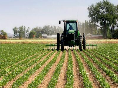 cooperare-romano-croata-pentru-implementarea-proiectelor-cufonduri-europene-pentru-agricultura-si-dezvoltare-rurala