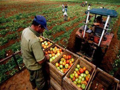 ce-beneficii-vor-avea-fermierii-care-se-inscriu-in-uniunea-nationala-a-cooperativelor-agricole-de-productie-integrata