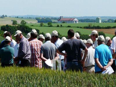 producatorii-de-fructe-si-legume-incurajati-sa-se-asocieze-pentru-a-accesa-fonduri-europene