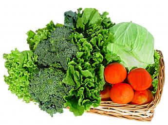 clasificarea-legumelor-in-functie-de-familia-botanica