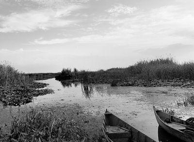 pescarii-din-delta-care-nu-si-au-realizat-cotele-in-2012-nu-vor-mai-primit-autorizatie