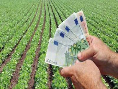 credite-de-14-milioane-de-euro-accesate-de-fermieri-din-banii-de-la-fondul-european-de-investitii
