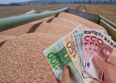 cum-au-evoluat-creditele-agricole-in-ultimii-ani