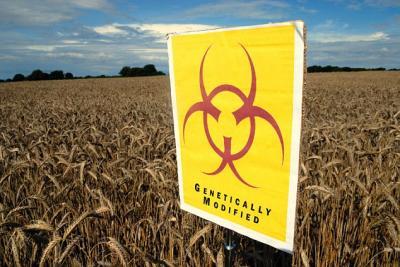 raport-efsa-reziduurile-de-pesticide-din-alimente-raman-la-un-nivel-de-peste-97-pentru-al-treilea-an-consecutiv