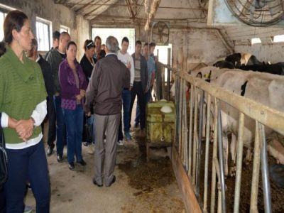 47-milioane-de-euro-pentru-cursuri-de-formare-a-fermierilor
