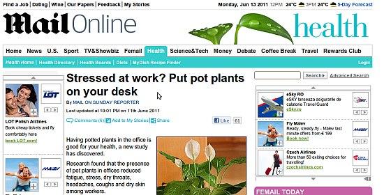 plantele-la-birou-reduc-stresul-afirma-psihologii