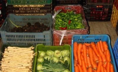 anul-acesta-se-pun-bazele-mult-discutatelor-si-vremelnic-anuntatelor-depozite-de-legume-fructe