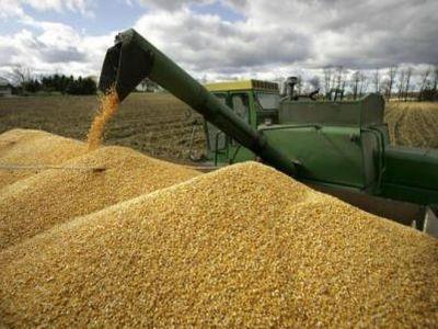 recomandari-fitosanitare-pentru-combaterea-daunatorilor-din-depozitele-de-cereale