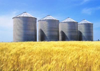 regulile-pentru-depozitarea-privata-a-produselor-agricole