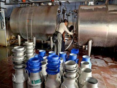 masuri-de-sprijin-pentru-producatorii-de-lapte-anuntate-de-comisia-europeana