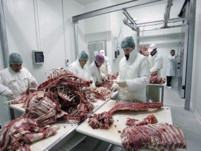 noi-loturi-de-carne-infestata-cu-e-coli-descoperite-de-inspectorii-ansvsa