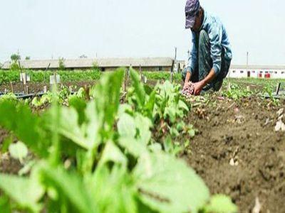 conditii-de-eligibilitate-pentru-accesarea-sprijinului-acordat-micilor-fermieri