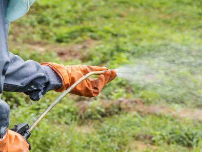 recomandari-pentru-erbicidarea-corecta-a-culturilor