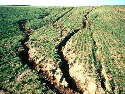 eroziunea-distruge-anual-100-de-milioane-de-tone-de-sol-fertil