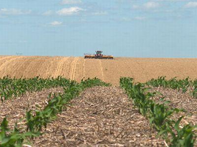 conditii-de-eligibilitate-pentru-accesarea-fondurilor-europene-destinate-investitiilor-in-exploatatii-agricole