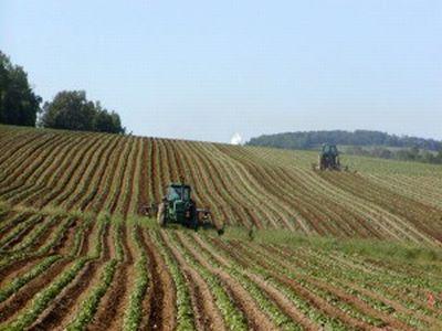 romania-detine-33-din-numarul-de-exploatatii-agricole-din-uniunea-europeana