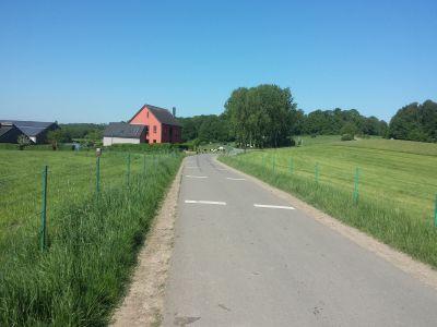 90-din-fermele-romanesti-au-suprafete-mai-mici-de-cinci-hectare
