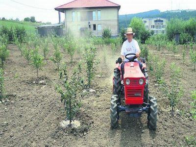 marea-majoritate-a-fermelor-romanesti-au-mai-putin-de-5-hectare