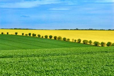 afir-a-epuizat-fondurile-destinate-submasurii-investitii-in-exploatatiile-agricole