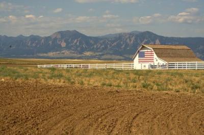 studiu-asupra-fermelor-americane