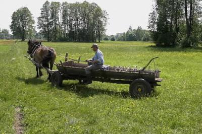 micii-fermieri-ori-comasare-ori-agricultura-ecologica