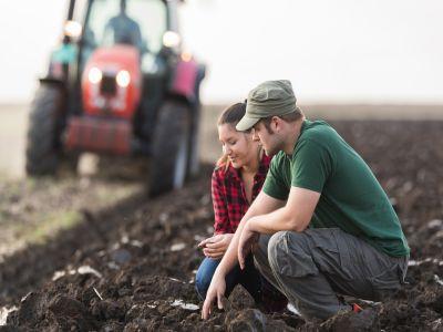 care-sunt-etapele-instalarii-tinerilor-fermieri-in-vederea-obtinerii-de-fonduri-nerambursabile