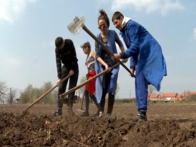 Sprijinul pentru instalarea tinerilor fermieri se apropie de nivelul maxim alocat