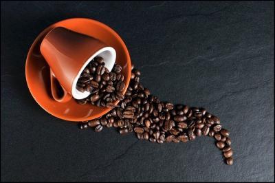 fermierii-americani-au-inceput-sa-cultive-cafea