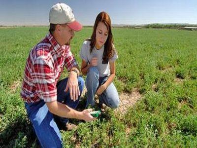 tinerii-fermieri-principalii-beneficiari-ai-finantarilor-acordate-prin-pndr