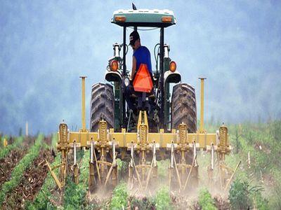 criterii-de-selectie-a-proiectelor-pentru-instalarea-tinerilor-fermieri