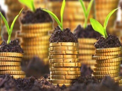 fondul-de-garantare-a-creditului-rural-a-redus-valoarea-comisionului-unic-de-garantare