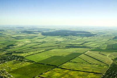 senatul-a-votat-recensamantul-general-agricol-pentru-2020