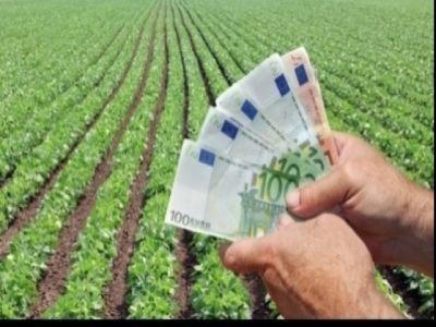 cum-a-fost-2018-din-punct-de-vedere-al-absorbtiei-fondurilor-europene-in-agricultura
