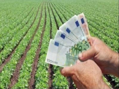 aproape-16-milioane-de-euro-pentru-plata-fermierilor-atrasi-din-bani-europeni-pana-la-sfarsitul-lunii