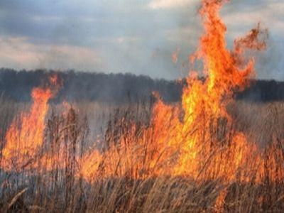 recomandari-de-sezon-pentru-evitarea-incendiilor-pe-camp