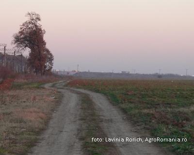 agrosic-o-asociatie-menita-sa-ii-sprijine-pe-fermierii-covasneni-in-lupta-cu-birocratia