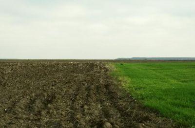 fonduri-europene-iunie-2013-cum-face-dovada-existentei-cofinantarii-un-fermier-interesat-de-masura-121