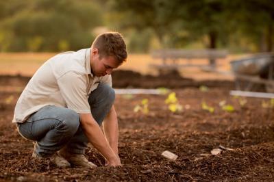 afir-fondurile-pentru-tineri-fermieri-s-au-epuizat
