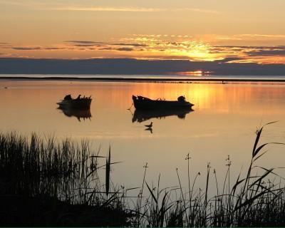 platile-pentru-pescuit-vor-fi-reluate-in-cel-mai-scurt-timp