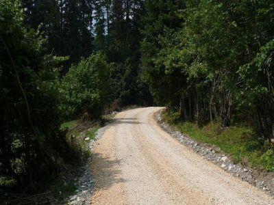 unitatile-administrativ-teritoriale-pot-cere-in-administrare-suprafete-forestiere